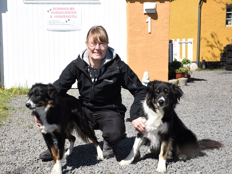 Nyt hundehotel i Vestermarie med all inclusive